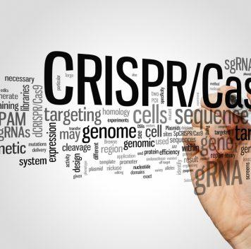 В США разрешили генетически модифицировать человека