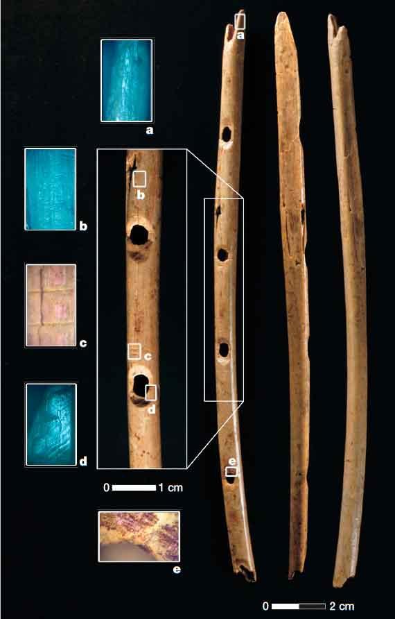 Костяная флейта из Холе Фельс (Германия). Источник: [3]