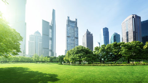 Зелёный город— ещё незначит справедливый