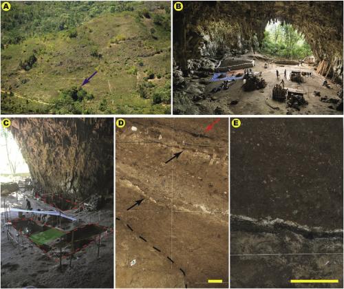 А: Расположение пещеры Лианг Буа указано синей стрелкой; B: внутренняя часть пещеры; С: участок пещеры, который изучался висследовании; D: нижняя часть отложений; красной стрелкой показаны следы использования огня; Е: другая часть отложений