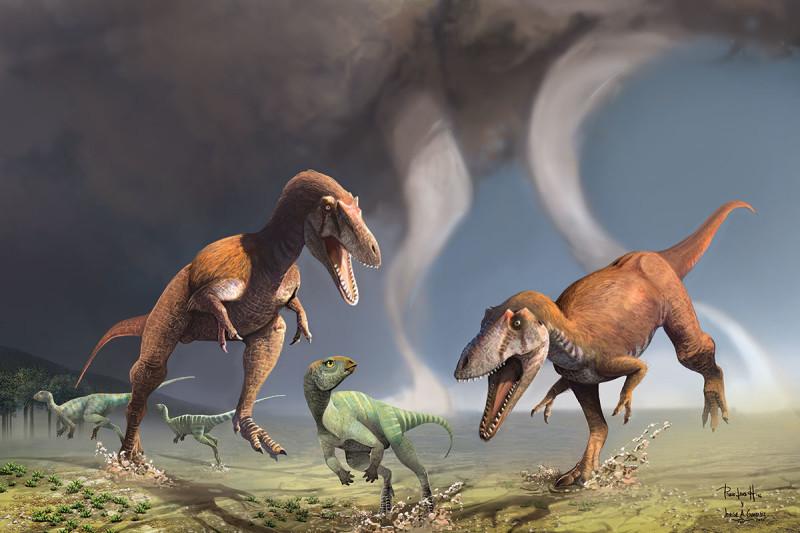 Возможно, что при мощном черепе иогромных зубах хищным динозаврам ненужны были большие верхние конечности.