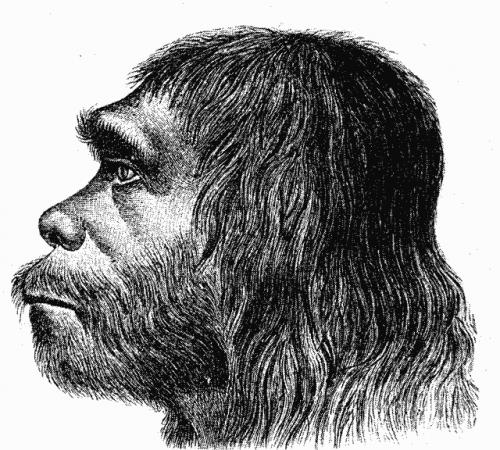 Неандерталец (рисунок)
