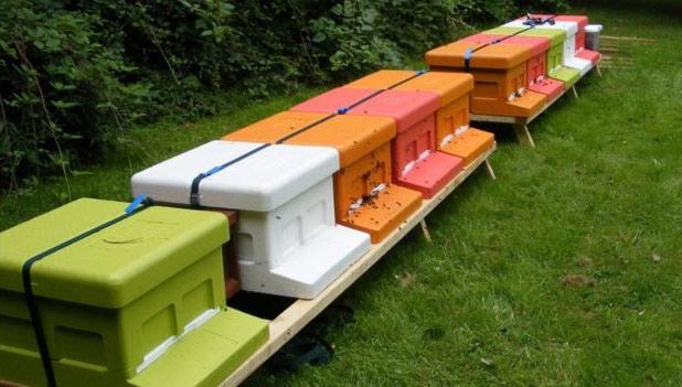 Специальные боксы, вкоторые пчеловоды упаковали извлечённых из-под крыши пчёл