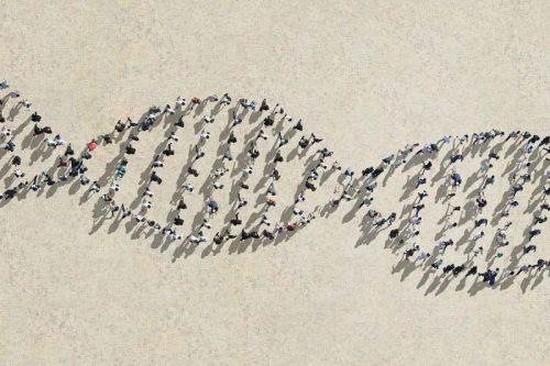 Генетическая вариативность сопряжена сриском раковых заболеваний