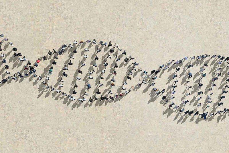 Генетическая вариативность сопряжена сриском раковых заболеваний.