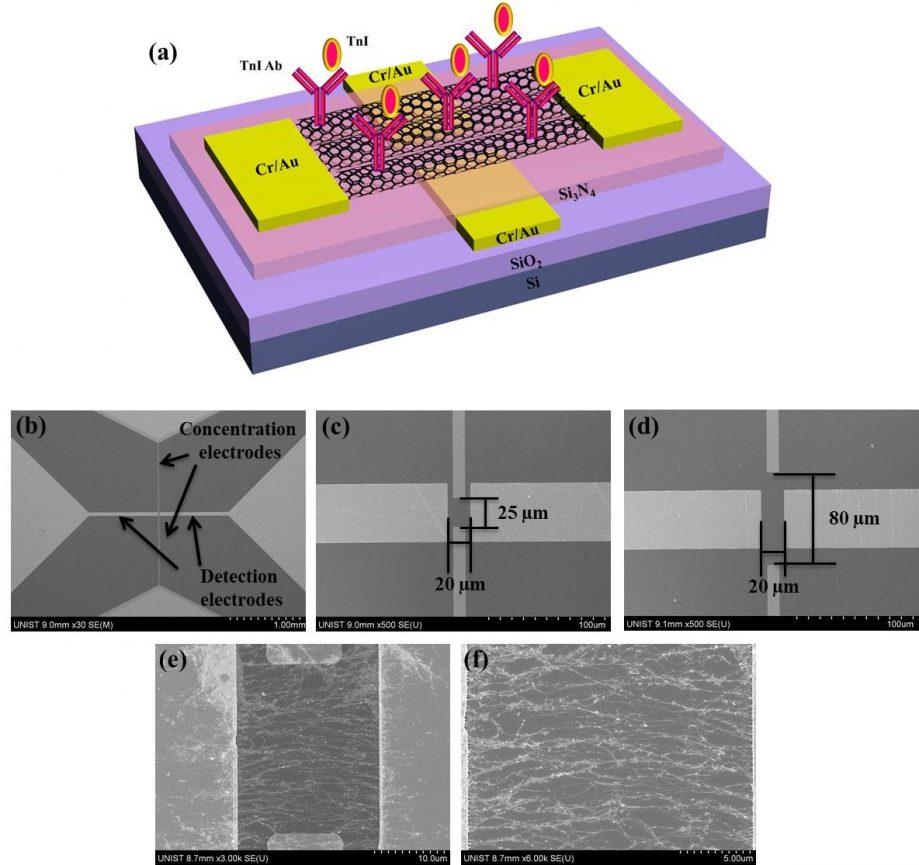 Схематическое изображение ОСУНТ-электрического иммуносенсора