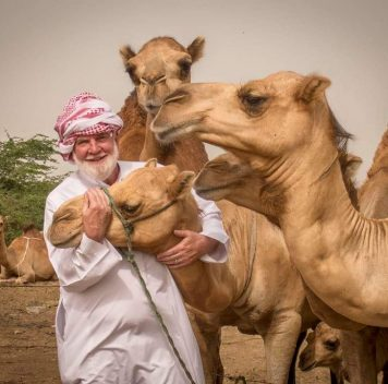 Простуда от верблюда