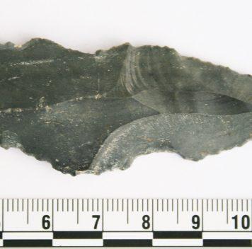 На орудиях каменного века найдены остатки мясной еды