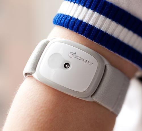 Фитнес-трекер BodyMedia Fit Core. Именно эти устройства использовали при проведении клинического исследования.