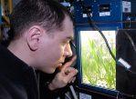 Космонавт Сергей Волков наблюдает за растениями в теплице «Лада-1» на Международной космической станции, 2011 год.