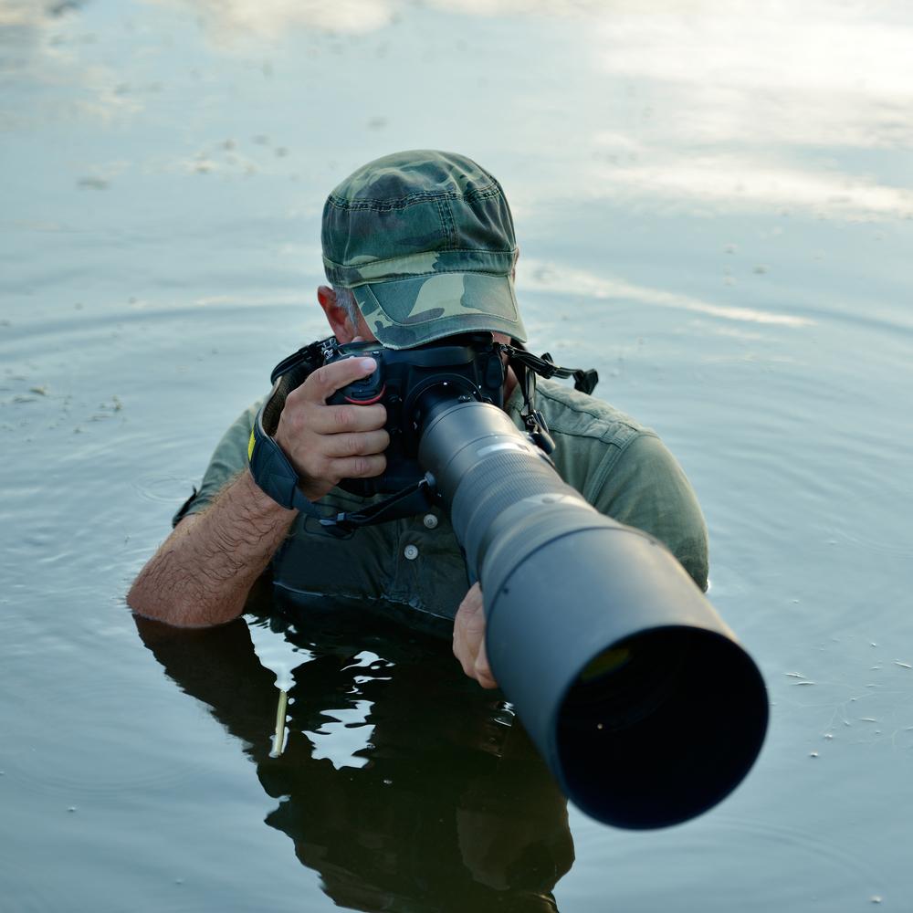 Альфа-фотогораф вестественной среде обитания