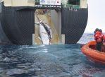 Японская плавучая фабрика по переработке китятины