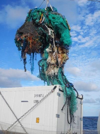 «Сети-призраки»— брошенные вморе рыболовные сети, вкоторых запутываются морские животные.