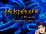 Микробиота и травма позвоночника.