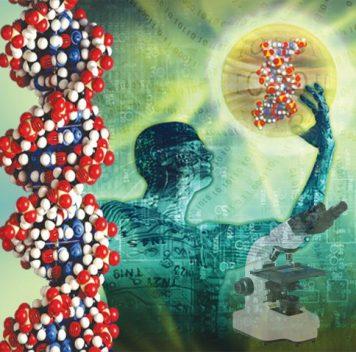 Как ваша ДНК упакована вкрохотное клеточное ядро
