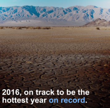 Вероятно, что 2016 станет самым жарким годом за всю историю наблюдений
