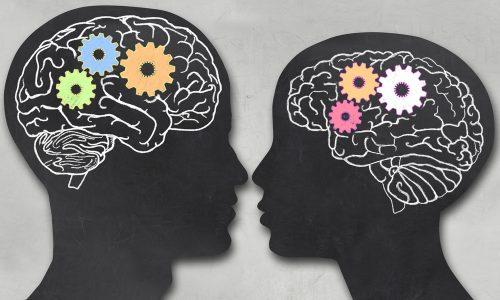 В начале зрелого возраста женщины лучше проходят тесты навсе виды памяти, чем мужчины