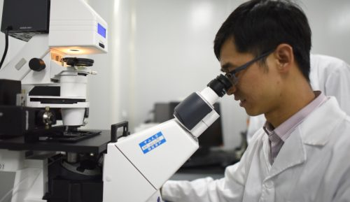 Китайские учёные уже начали использовать CRISPR налюдях.