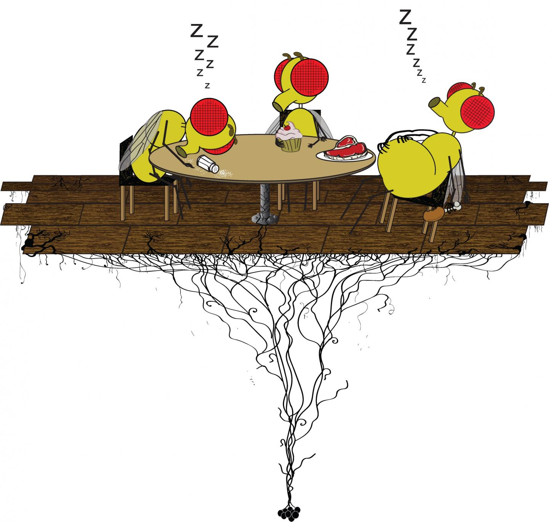 "«Послеобеденная кома» удрозофил. Автор: <a href=""https://www.eurekalert.org/multimedia/pub/127489.php?from=343513"">Кит Мерфи</a> (Keith Murphy)."