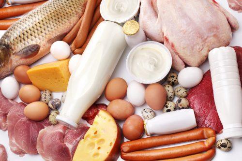 Богатая белком пища