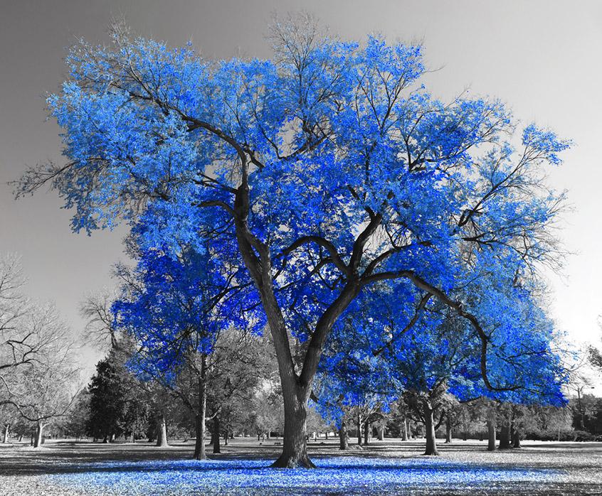 Мы так ине поняли, как печаль влияет навосприятие цвета