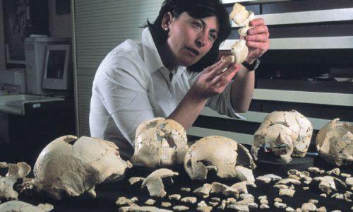 Палеонтолог рассматривает несколько тысяч костей иосколков костей, найденных впещере Сима де лос Уэсос
