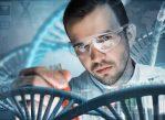 Длинные некодирующие РНК регулируют важные клеточные процессы