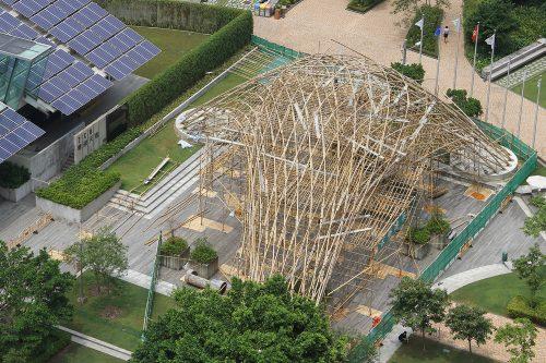 Бамбуковый павильон