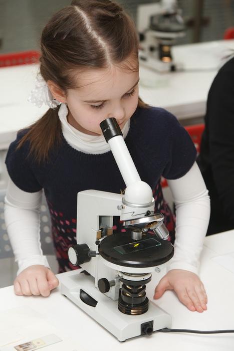 «Мир под микроскопом»