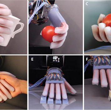 Роборука определяет спелый помидор наощупь