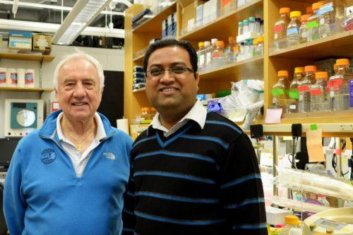 Авторы исследования: профессор Ян Уилсон (слева) иРамешвар Кадам (справа).