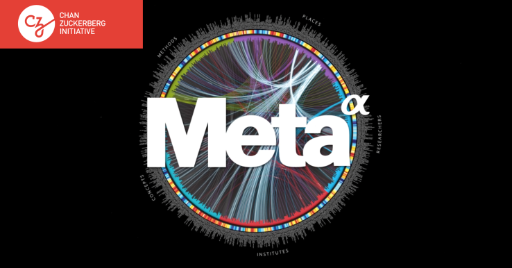 Схематическое изображение принципа работы <i>Meta</i>.