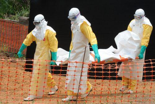 Клинические испытания вакцин занимают много времени. Ксожалению, многие недожили до появления вакцины от лихорадки Эбола.