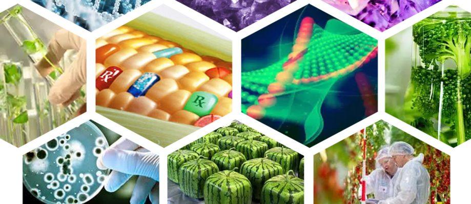 ГМО итехнология CRISPR-CAS9