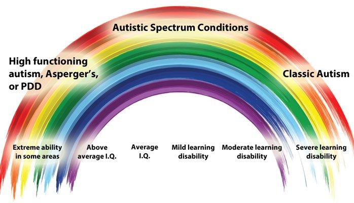 Аутистический спектр охватывает широкий спектр состояний. Многие люди саутистическими чертами способны— при достаточной поддержке от окружающих— преуспеть всамых разных областях деятельности.