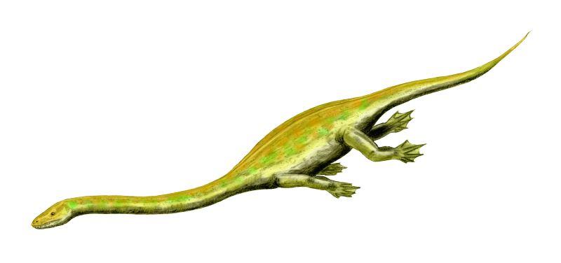 Диноцефалозавр.