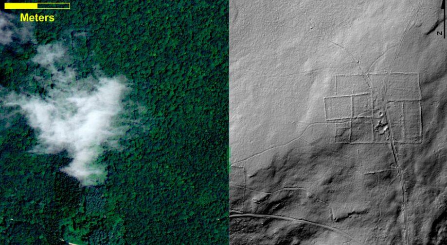 Аэрофотоснимок леса вКоннектикуте исканирование LIDAR