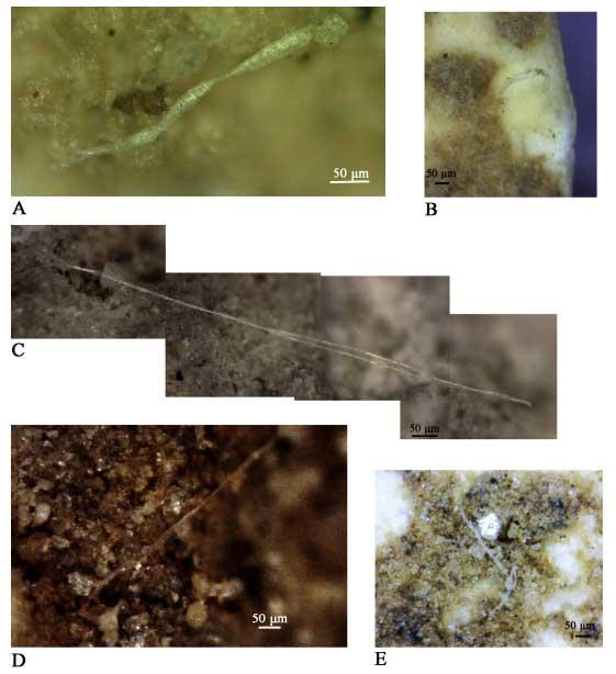 Скрученные волокна наповерхности орудий из Абри ду Марас