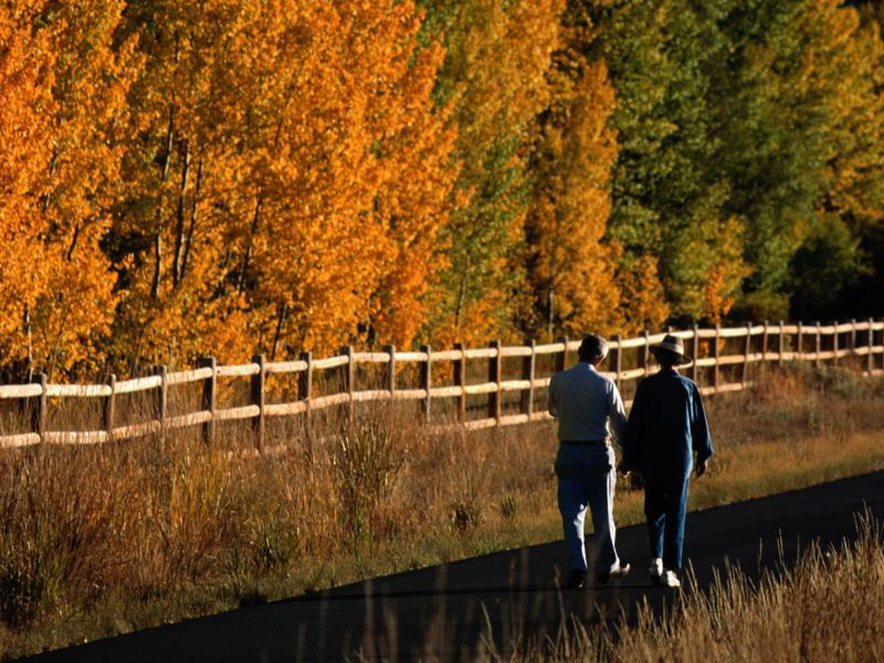 По мнению авторов нового исследования, прогулки— хороший способ снижения риска болезней сердца впожилом возрасте.