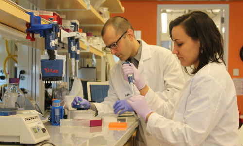 Ведущий автор исследования Янив Эрлих (слева) влаборатории Нью-Йоркского геномного центра. Источник: New York Genome Center.