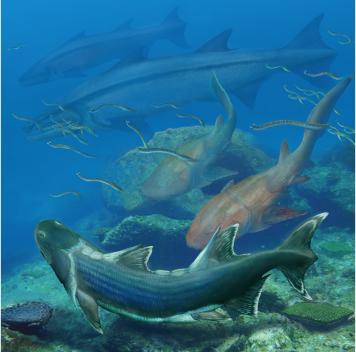 Новый вид древних костных рыб найден вКитае