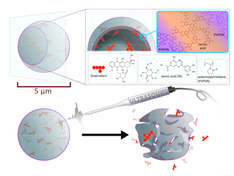 Микрокапсулы диаметром 5 мкм могут высвобождать находящееся вних лекарство под воздействием ультразвука.