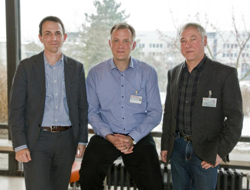 Руководитель работы, доктор Грегор Чизик (в центре), полагает, что влияние видеоигр напсихику необходимо исследовать, поскольку всё больше геймеров испытывают сложности стем, чтобы контролировать свое увлечение.