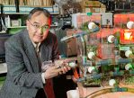 Руководитель научной группы Тед Шульц и его подопечные — муравьи.
