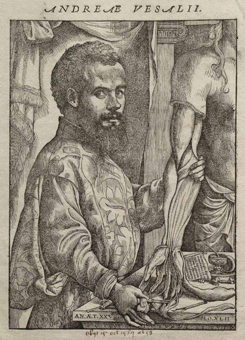 Андрей Везалий, один из основоположников научной анатомии.