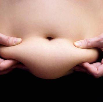 Обнаружен белок, мешающий бурому жиру вырабатывать тепло
