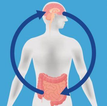 Болезнь Паркинсона может начинаться вкишечнике