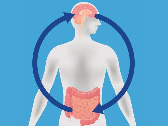 Болезнь Паркинсона относится кнейродегенеративным заболеваниям. Однако причины её возникновения могут лежать за пределами нервной системы.
