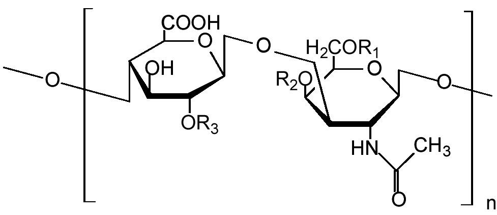 Молекула хондроитина.