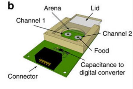 Одна из установок, которые использовали входе экспериментов. Устройство под названием flyPAD (fly Proboscis and Activity Detector) три года назад представили учёные из Центра изучения неизвестного иВашингтонского университета. Некоторые из них принимали участие ивэтом исследовании.